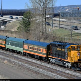 130 Northern Pacific Gray